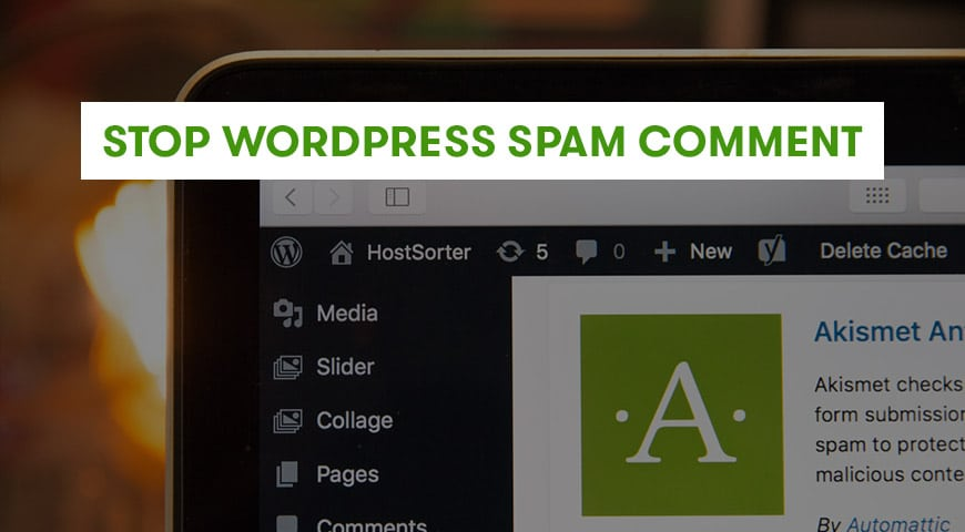 stop wordpress spam comment